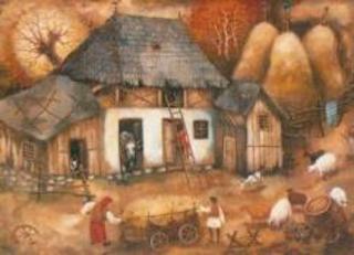 casa-taranului